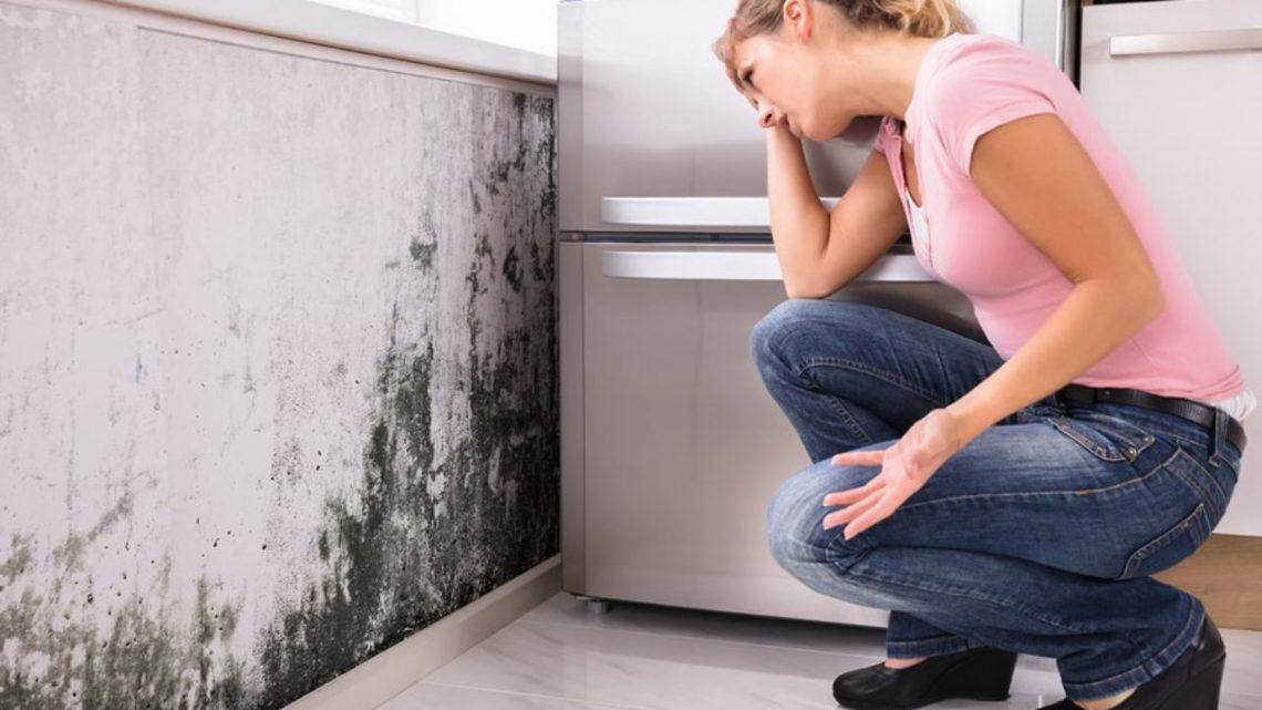 Que faire si vous avez un problème de fuite d'eau ?