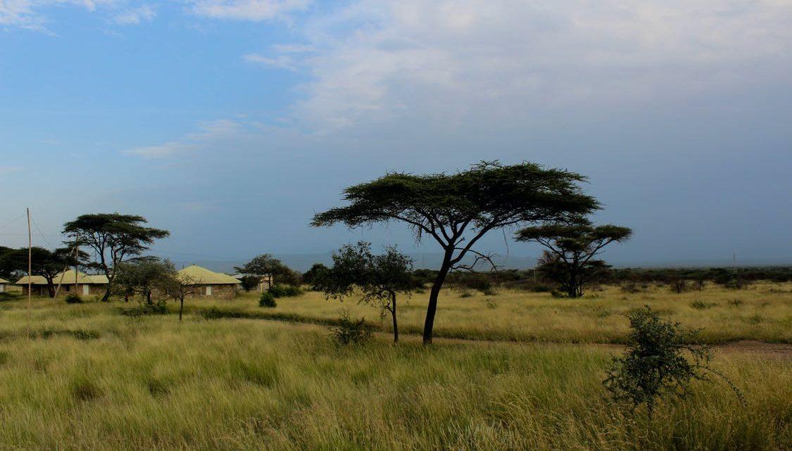 Partir en voyage de noces en Éthiopie et découvrir ses merveilles touristiques